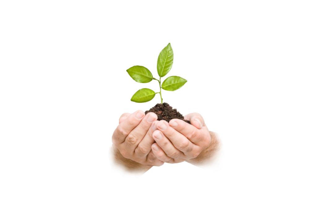绿色环保成家居供应链主旋律